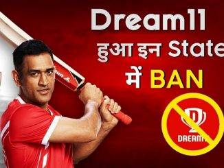 Dream11 banned in Tamilnadu